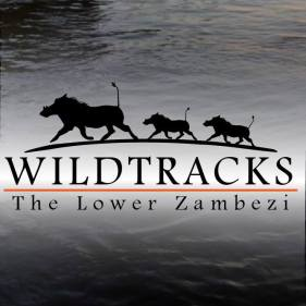 wildtracks.jpg